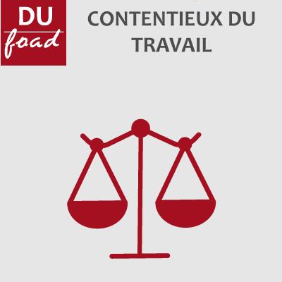 Logo DU contentieux du travail  20-21