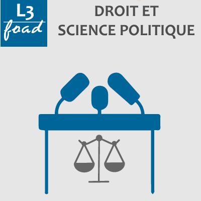 Logo Licence 3 droit science politique 20-21