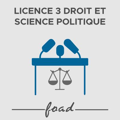 Logo Licence 3 Droit et science politique FOAD 21-22