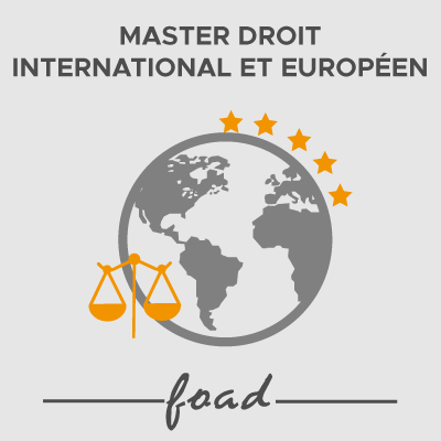 Logo Master droit international et européen 21-22