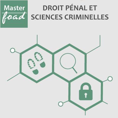 Master Droit pénal et sciences criminelles