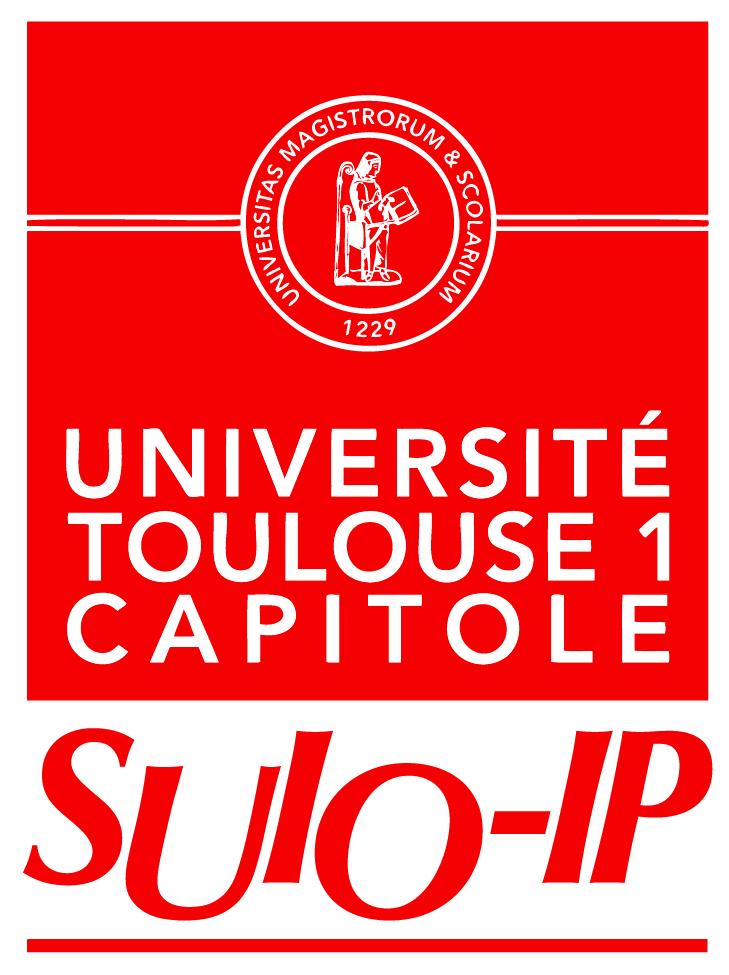 Logo SUIO-IP (Service Universitaire d'Information, d'Orientation et d'aide à l'Insertion Professionnelle)