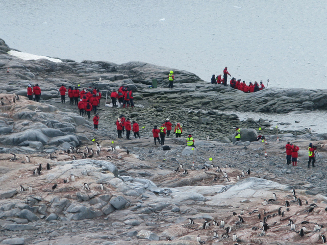 Tourism_in_Antarctica_(Cuverville_island)